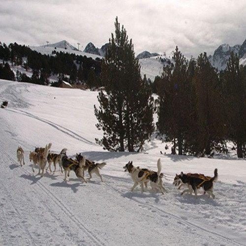 Aventura nórdica - Andorra