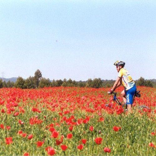 Bicicleta de montaña - Valencia