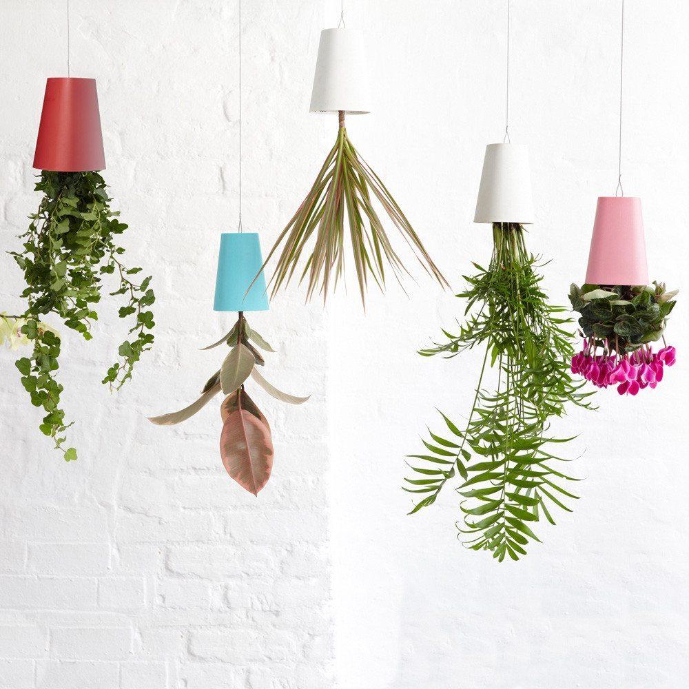 Boskke Sky Planter - Der etwas andere Blumentopf