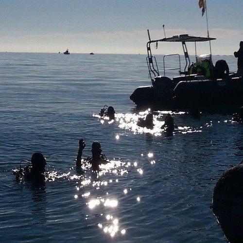 Buceo inmersión - Valencia