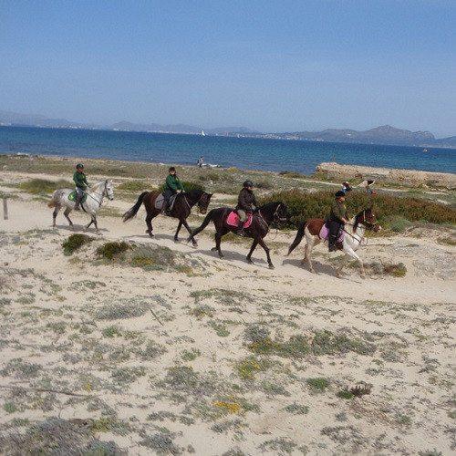 Clase de hípica y excursión por el valle - Mallorca