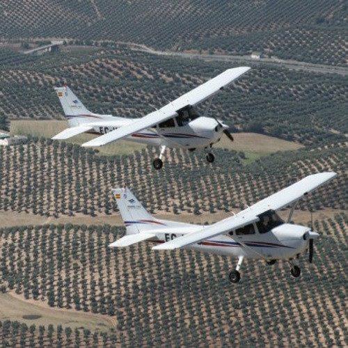 Curso de iniciación al Vuelo en Avioneta - Granada