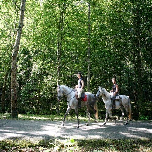 Escapada Rural con cena gourmet y bicicletas de montaña - Cantabria