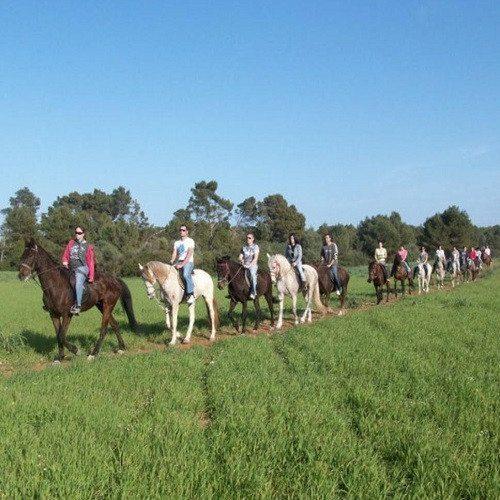 Excursión a caballo de bosque a playa - Mallorca