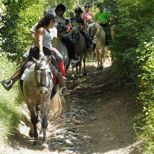 Excursión a Caballo - Lleida