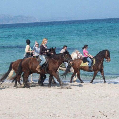 Excursión a caballo por la playa de 3 horas - Mallorca