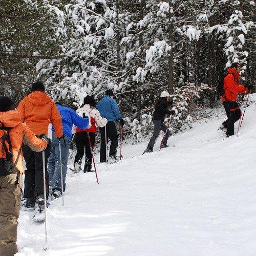 Excursión con raquetas de nieve en Andorra