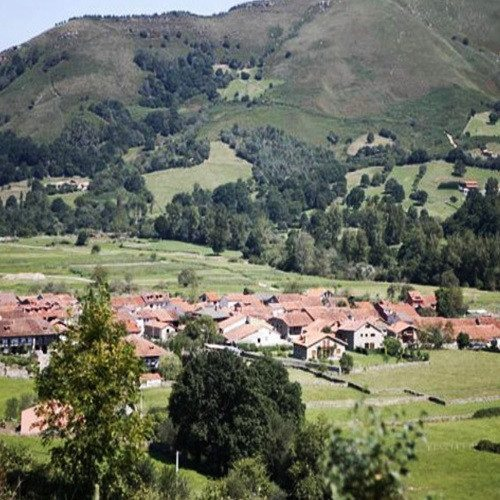 Noche en Apartamento Rural: detalle de bienvenida y bicicletas de montaña - Cantabria