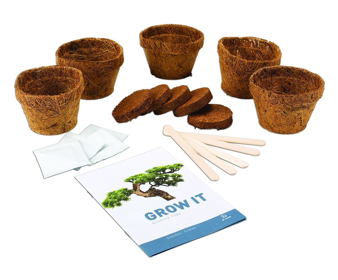 Grow Bonsai Set