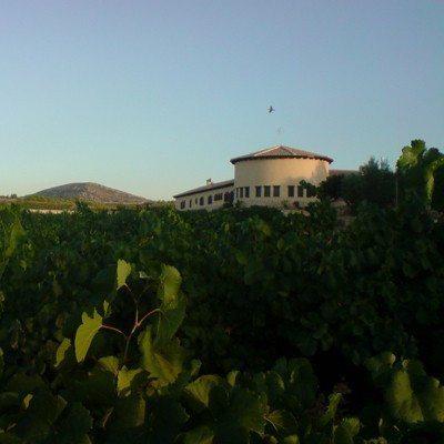 Noche de hotel con curso de enología y cata - Albacete