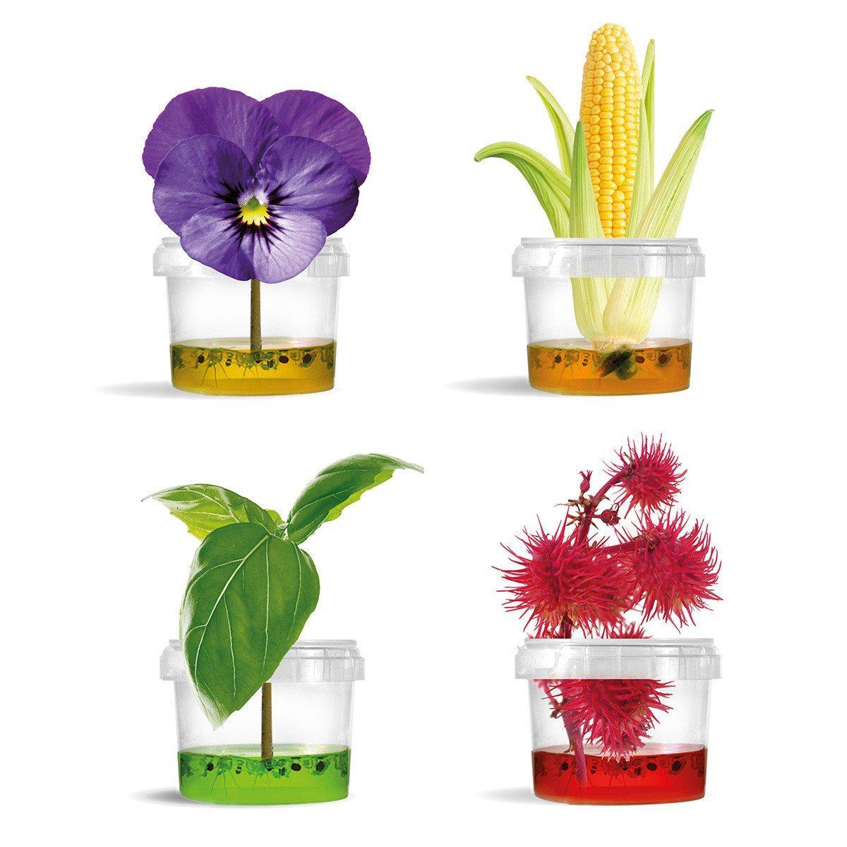 Original Plantarium ® Gardener Collection