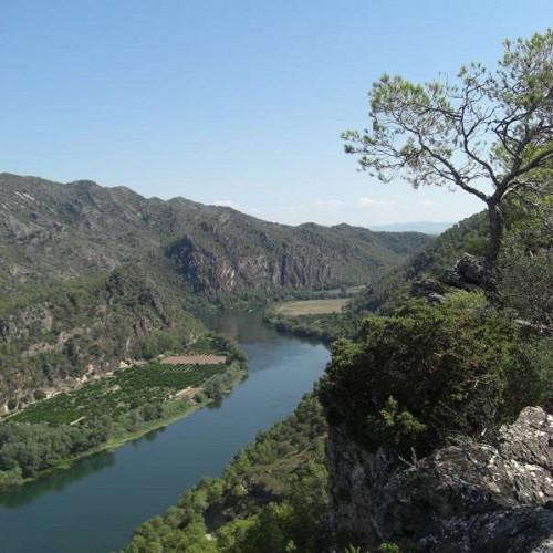 Paddle Surf ruta larga de Móra a Miravet - Tarragona