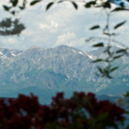 Paquete Gastronómico con visita a Bodega - Picos de Europa