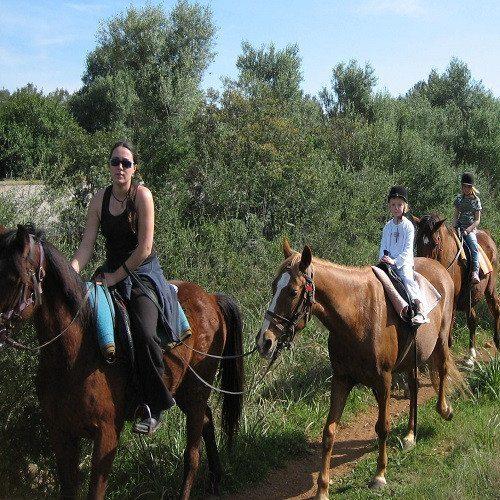 Paseo a caballo y visita a granja - Mallorca