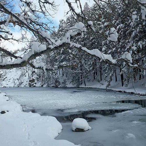Raquetas de Nieve al Atardecer en Navacerrada - Madrid