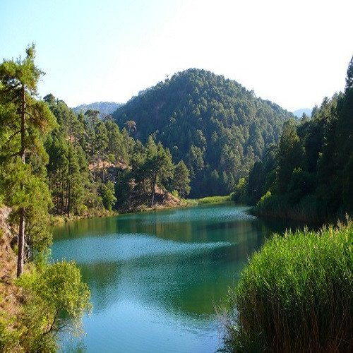 Ruta 4x4 Observación de Buitres - Jaén