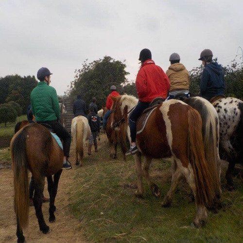 Ruta a Caballo por la costa - Cantabría