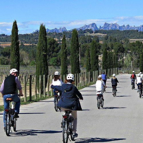 Ruta en bicicleta y visita con degustación de Cavas - Barcelona
