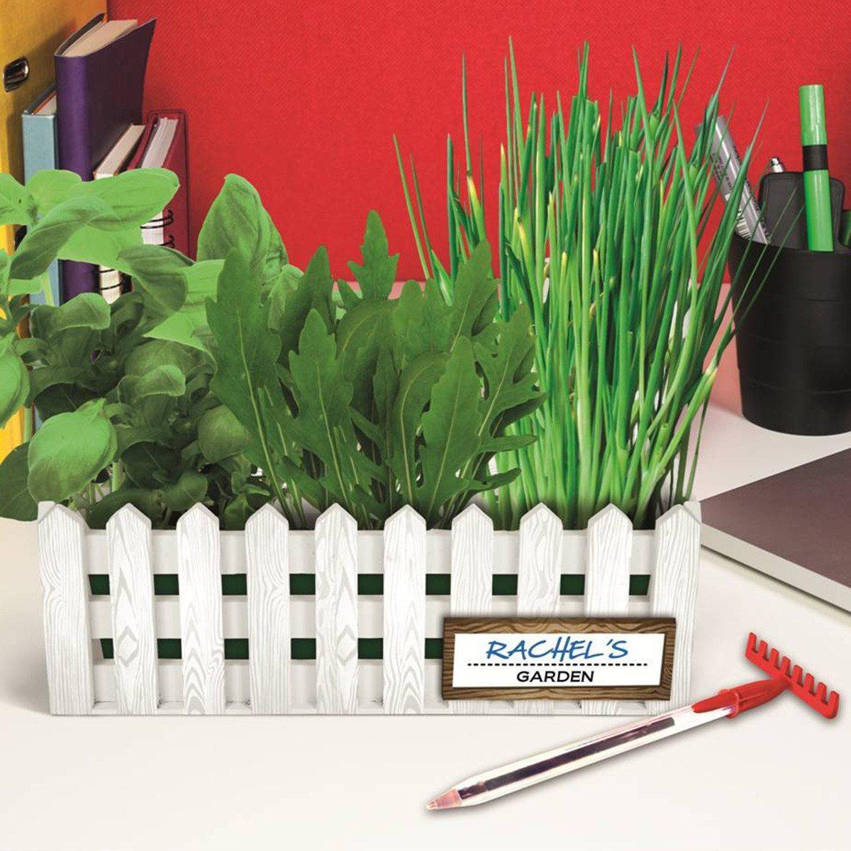 Schreibtisch-Garten