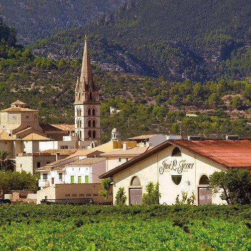 Visita a Bodega con cata de 3 vinos - Mallorca