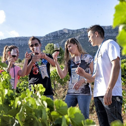 Visita enológica a Montsant con cata y ruta 4x4 - Tarragona