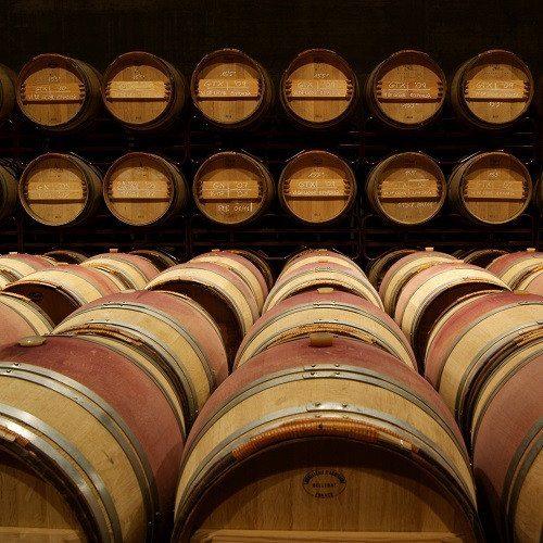 Visita enológica con cata de vino y aceite para 2 - Girona