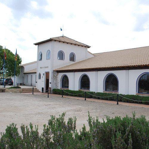 Visita guiada a bodega con degustación - Valencia