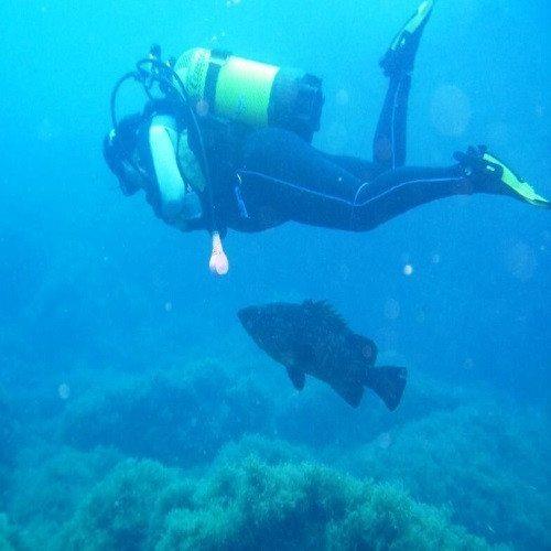 Buceo en la reserva de las Islas Columbretes - Castellón