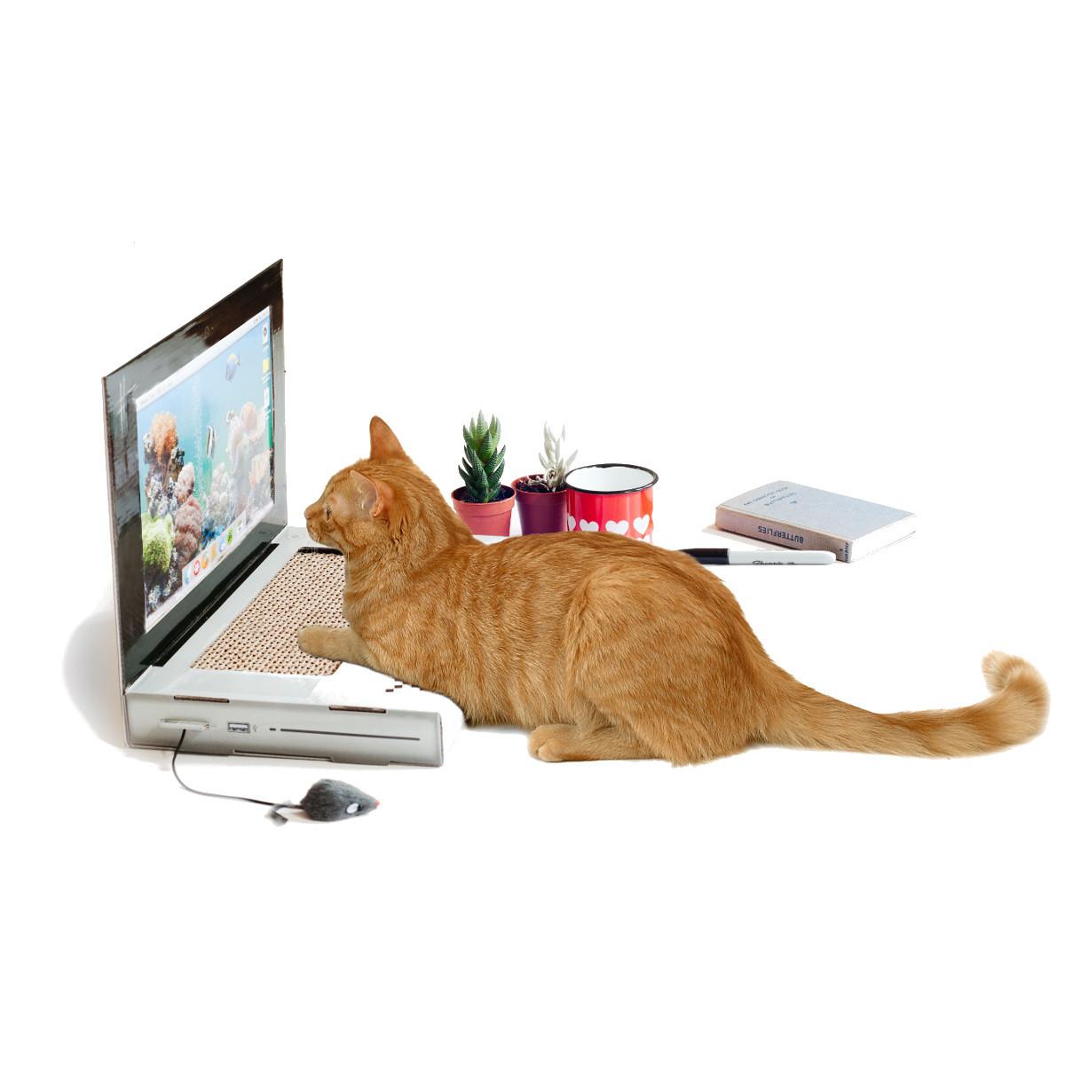 Portatil de juguete para el gato - Cada uno con el suyo