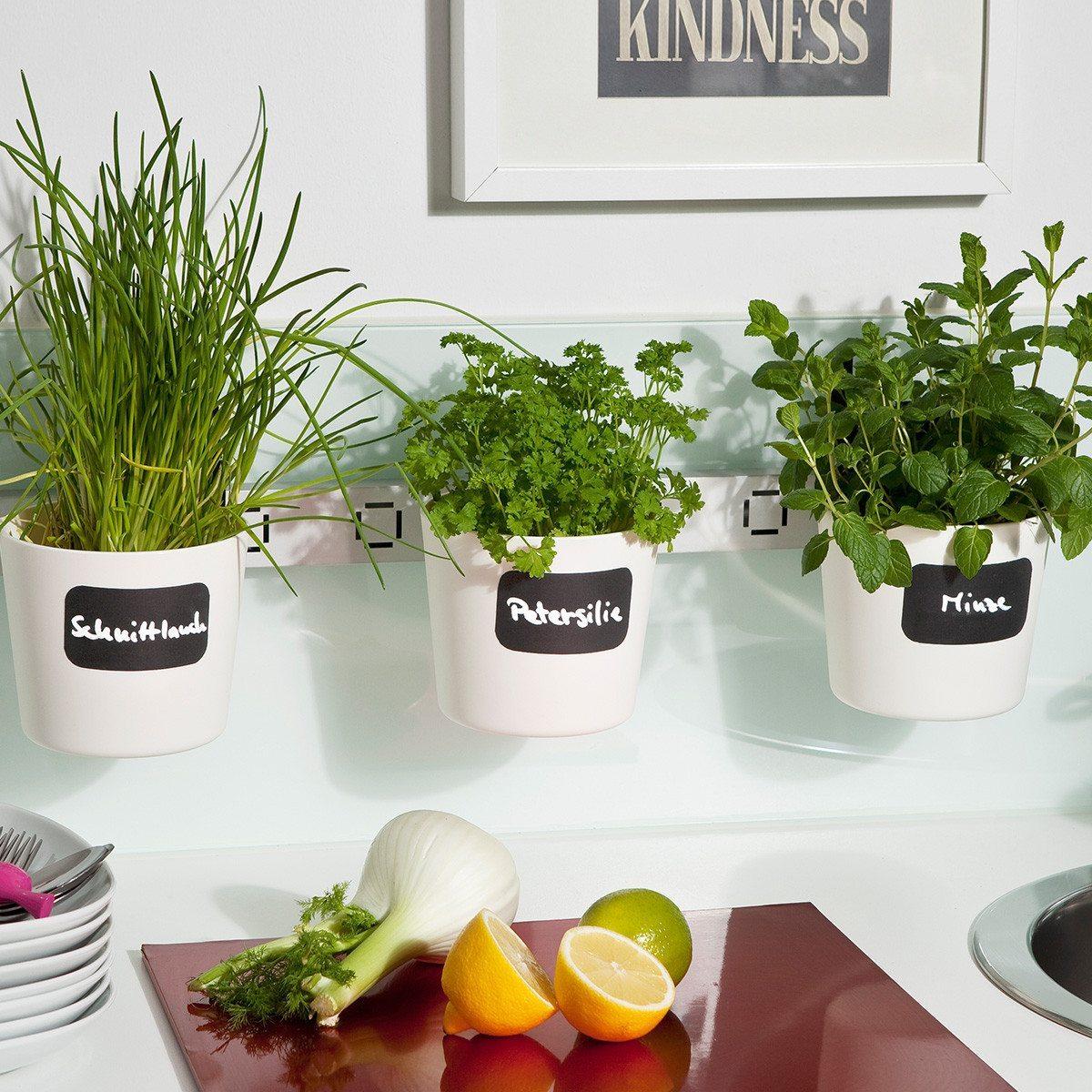 Macetero de ventana para plantas arom ticas - Cultivar plantas aromaticas en casa ...