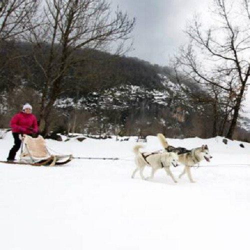 Pack nórdico con ruta mushing - Huesca - 2 personas