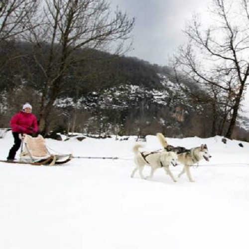 Pack nórdico con ruta mushing - Huesca