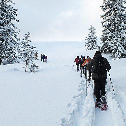 Raquetas de nieve para 4 personas - Cantabria