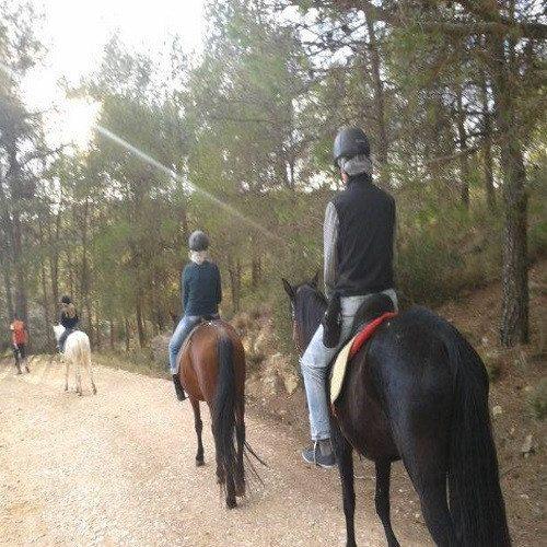 Ruta a Caballo - Valencia