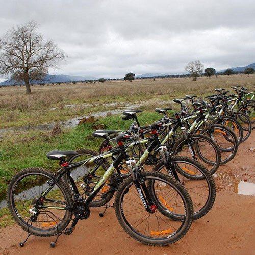 Ruta en bicicleta - Ciudad Real