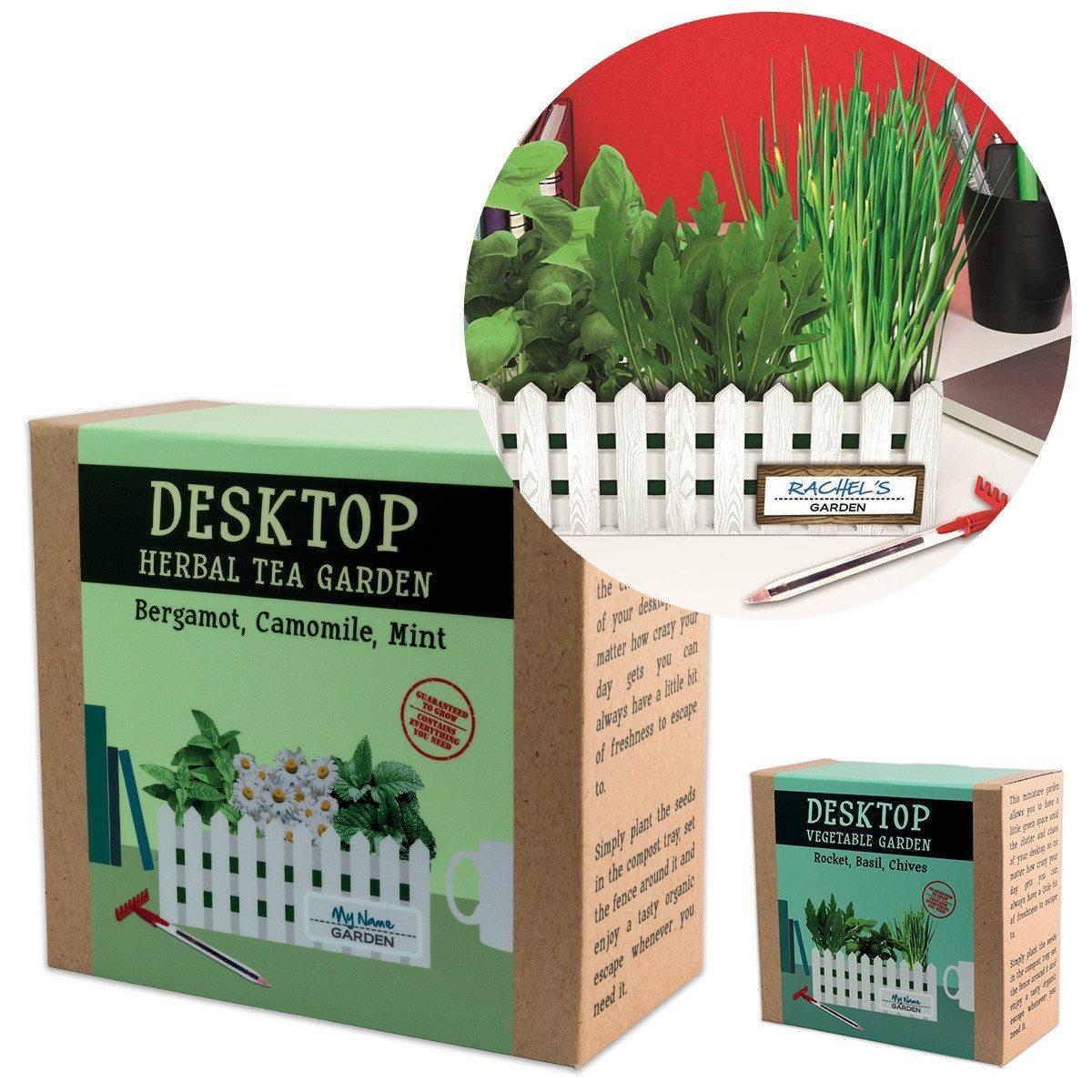 Jardín de escritorio - Un poco de naturaleza en tu mesa