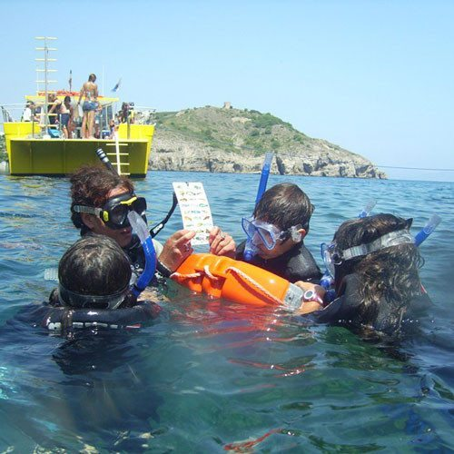 Snorkel desde barco - Girona