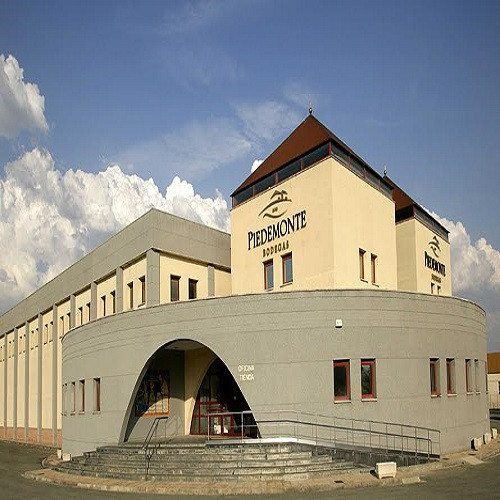 Visita guiada con cata más Museo del vino - Navarra