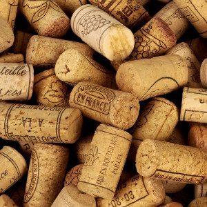 Cata dirigida de grandes vinos para dos - Madrid