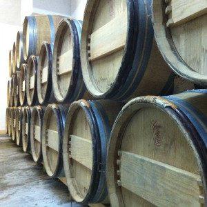 Curso completo de viticultura, enología y cata - Barcelona