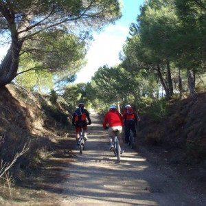 Descenso en bicicleta - Jaén