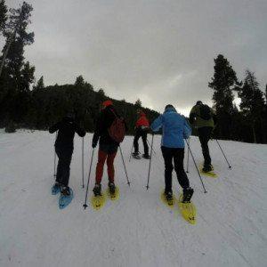 Excursión a la montaña con Raquetas de Nieve - Gerona