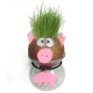 Cabeza de hierba – Divertida planta para cultivar