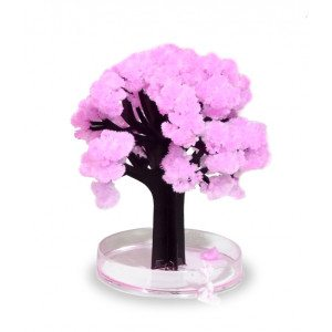 Árbol Sakura - ¡Florece de verdad!