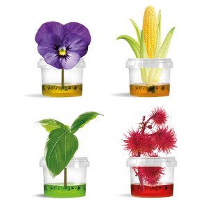Original Plantarium ® Gardener Collection
