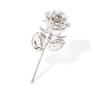 Rose en platine