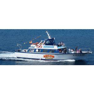 Excursión de 4 horas en barco desde Sta. Ponsa - Mallorca