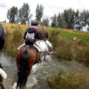 Ruta a caballo - Ciudad Real