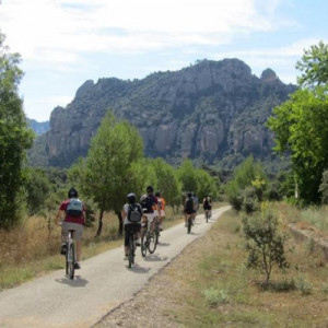 Ruta en Mountain Bike por Reserva natural para 4 - Tarragona