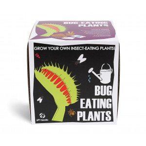 Sow & Grow - Plantas temáticas - Pack para plantar
